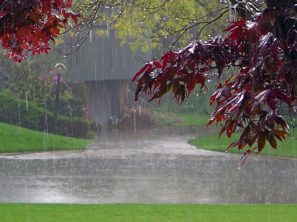 too much rain falling