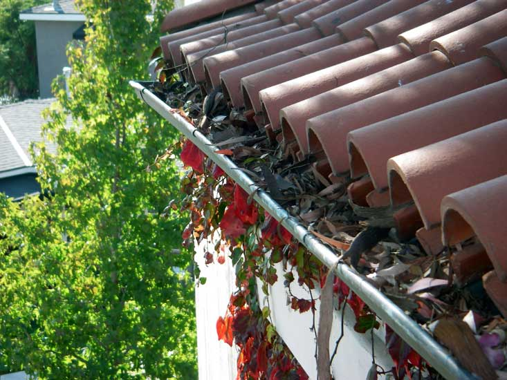 replacement-windows-austin-texas-gutters