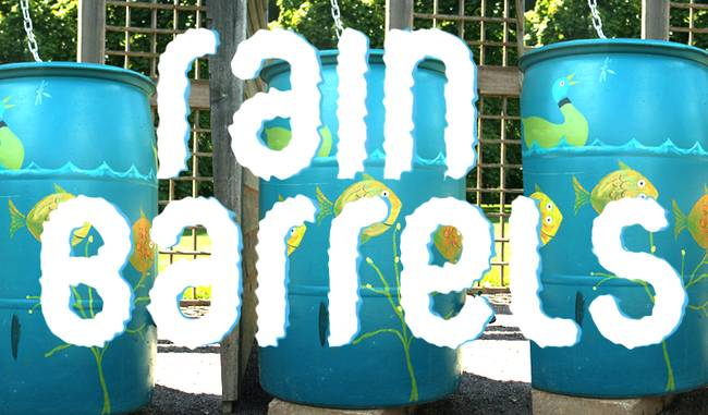 DIY-rain-barrels.png.650x0_q70_crop-smart